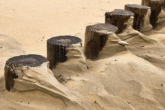 Shapes and paterns on the beach by Adri  Padmos