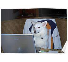 Computer Dog Poster