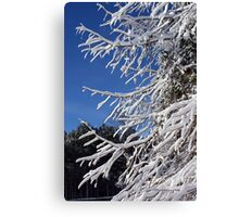 Branches in Snow Canvas Print