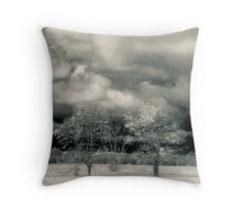 Three Trees Along The Maumee River Throw Pillow