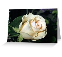Classy In Cream Greeting Card