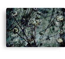 Botanical Abstract in Pastel III Canvas Print