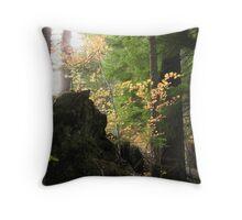 Autumn's Rays Throw Pillow