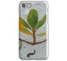 Mangrove Majesty iPhone Case/Skin