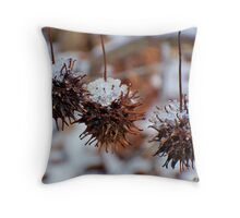 The Three Amigos - Sweet gum balls in icy sombreros Throw Pillow