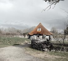 ancient rustic cottage by morrbyte