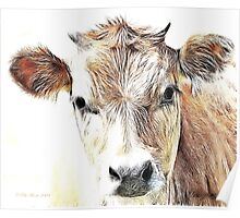 Jersey Milk Cow Poster