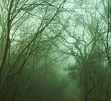 Mistery Path by marens