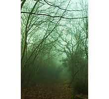 Mistery Path Photographic Print