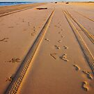 Making Tracks by Paul Moore