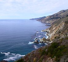 Pacific Coast Highway, California by dane18