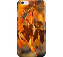 auburn autumn iPhone Case/Skin