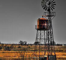 Texas Wind Mill by Scott Lebredo