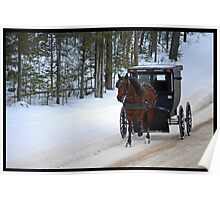 Amish Family in Horse and Buggy Poster