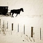 Amish in Chisholm by Diane Blastorah