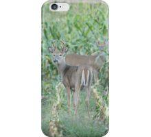 Young Buck In Velvet 2-2015 iPhone Case/Skin