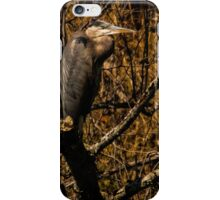 Among the Twigs iPhone Case/Skin