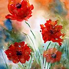 Poppies by Josie Duff