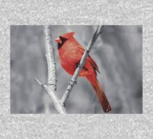 Male Cardinal Selective Coloring Kids Clothes