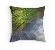 To Swim with the Reeds Throw Pillow