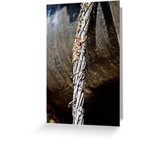 Metal wire Greeting Card