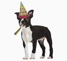 Boston Terrier Birthday Kids Tee