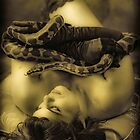 Twas the serpent who beguiled me... by Paul Louis Villani