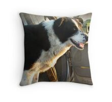 Stay in the pickup, Jake! Throw Pillow