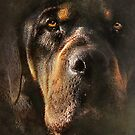 Sweetest Dog by Kay Kempton Raade