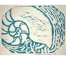 nautilus woodcut Photographic Print