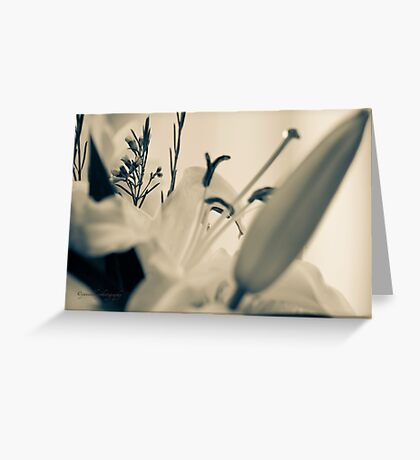 I Love Lilies Greeting Card