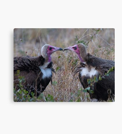 Who You Calling Ugly? Canvas Print