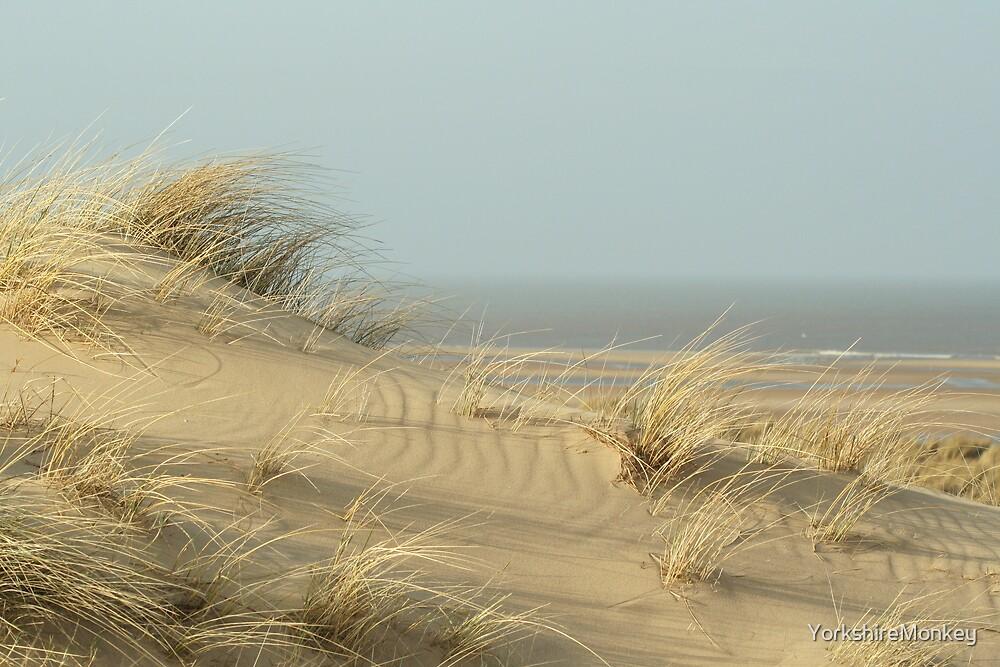 Dunes near Burnham Overy Staithe by YorkshireMonkey
