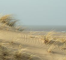 Dunes near Burnham Overy Staithe by YorkshireMonkey