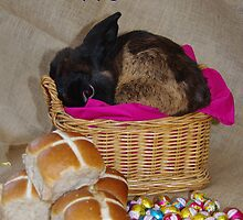 Bunny in a Basket by Lisa Evans