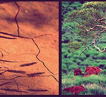 Tree & Dirt by oddoutlet