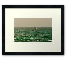 Flying ... Framed Print