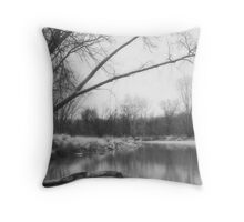 Along The River In Winter Throw Pillow