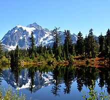 Mount Shuksan on a Sunny day by Lena127