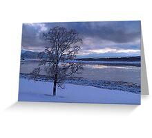 Winter tree-I Greeting Card