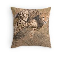 The Chase Begins Throw Pillow