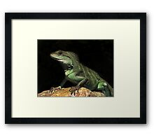 Here be Dragons - proceed with caution!?! Framed Print