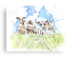 Bincombe Cows Canvas Print