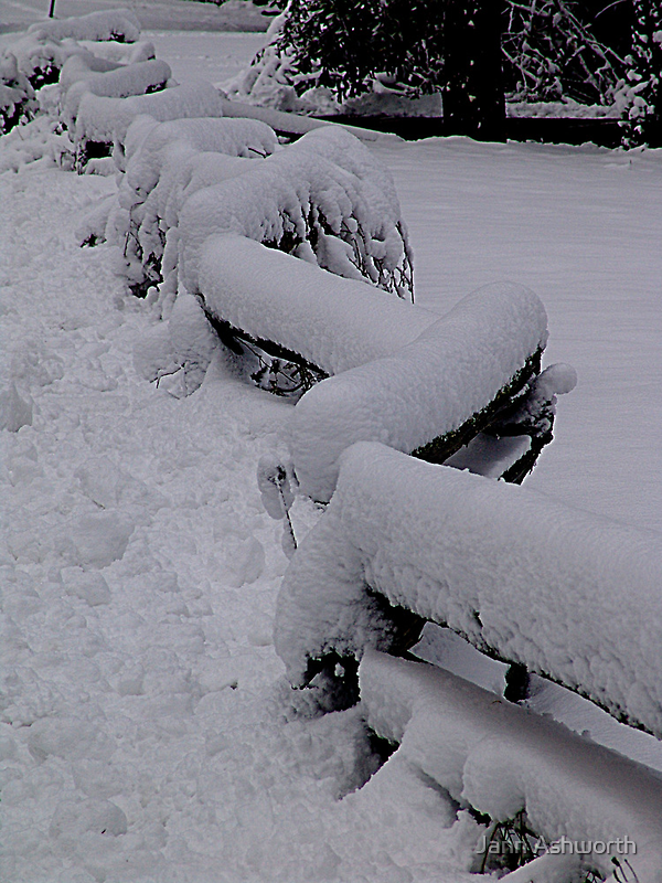 Snow Fence by Jann Ashworth