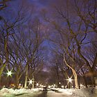 Central Park The Mall by Sam Tabone