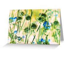 Botanical Abstract in Pastel IV Greeting Card