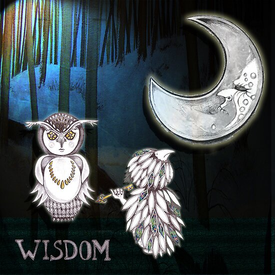 Wisdom Of The Owl by rosell
