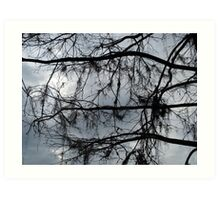 Bare Branches - December in Bayou George, FL Art Print