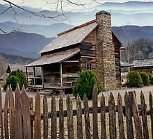 Appalachian Mountain Cabin by Randall Nyhof