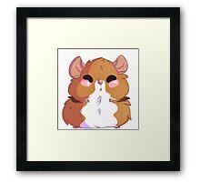 Hamster Everything Framed Print